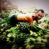 banan-polska-marka-osobista-michal-zwierz-personal-branding